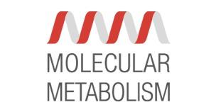 MOLECULAR METABOLISM LOGO